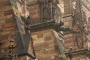 gargoyles Notre Dame of Strasbourg Germany