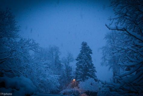 New England snowy morning
