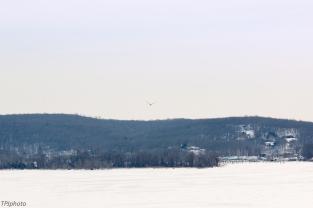 Frozen Connecticut River