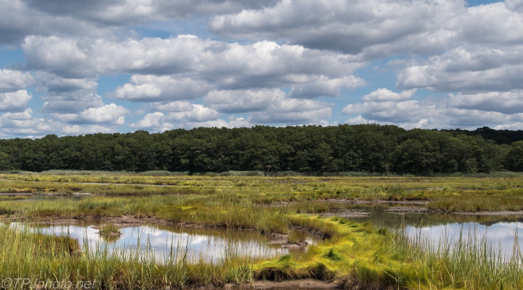 Rocky Neck Marsh Connecticut - Click To Enlarge