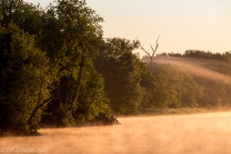 Early Fog Connecticut River - Click To Enlarge