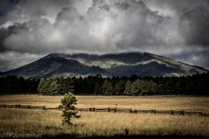 Kendrick Peak Arizona