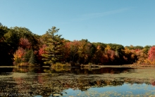 Gay City State Park - Click To Enlarge