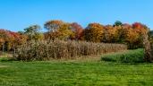 Fall Farm Views - Click To Enlarge