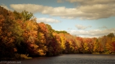 Fall Foliage - Click To Enlarge