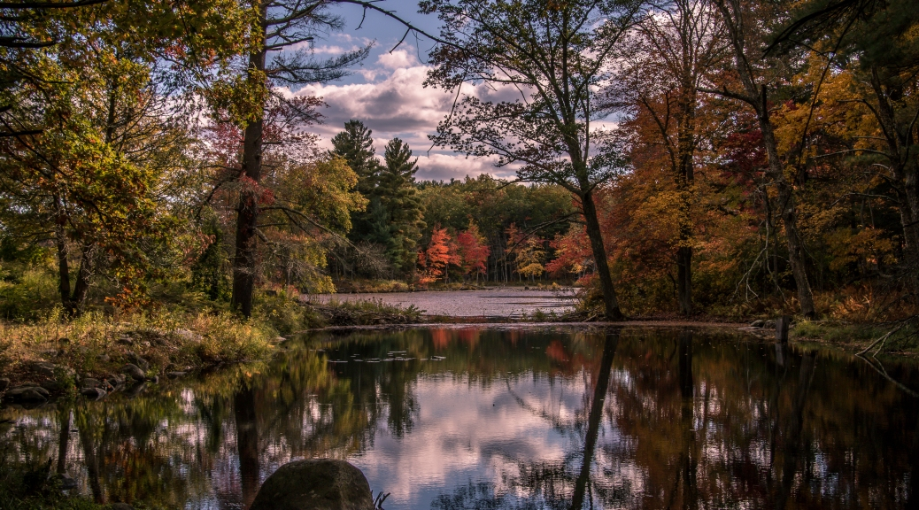 Fall Foliage Lake Marie - Click To Enlarge
