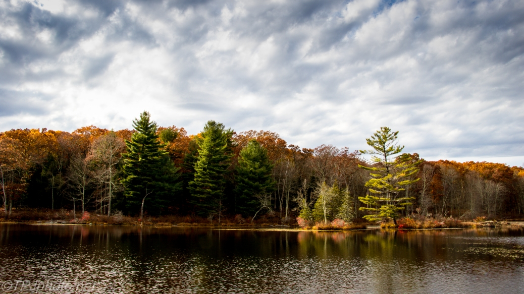 Fall Colors On The Lake - Click To Enlarge