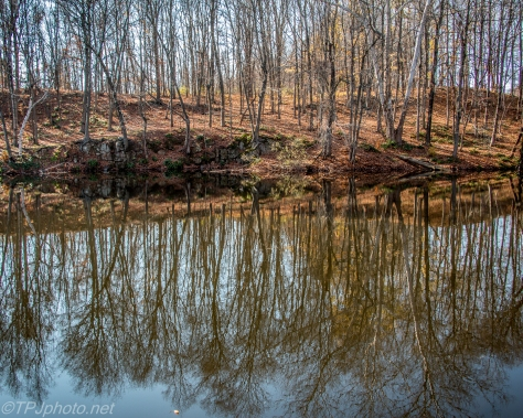 Connecticut Pond Reflections - Click To Enlarge