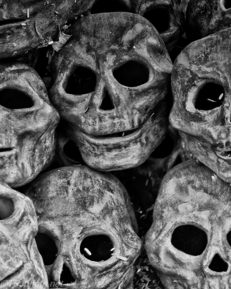 Ceramic Skulls - Click To Enlarge