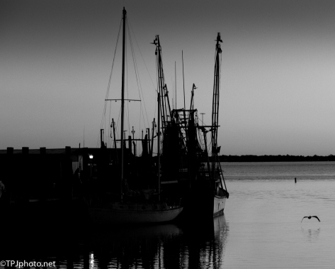 Black And White Night Shrimp Boats - Click To Enlarge