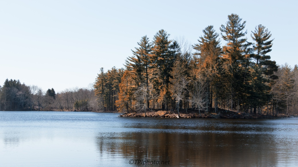 Pine Tree Island - Click To Enlarge