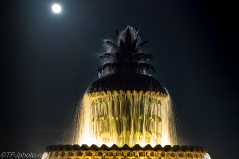 Charleston Fountain In Moonlight - Click To Enlarge