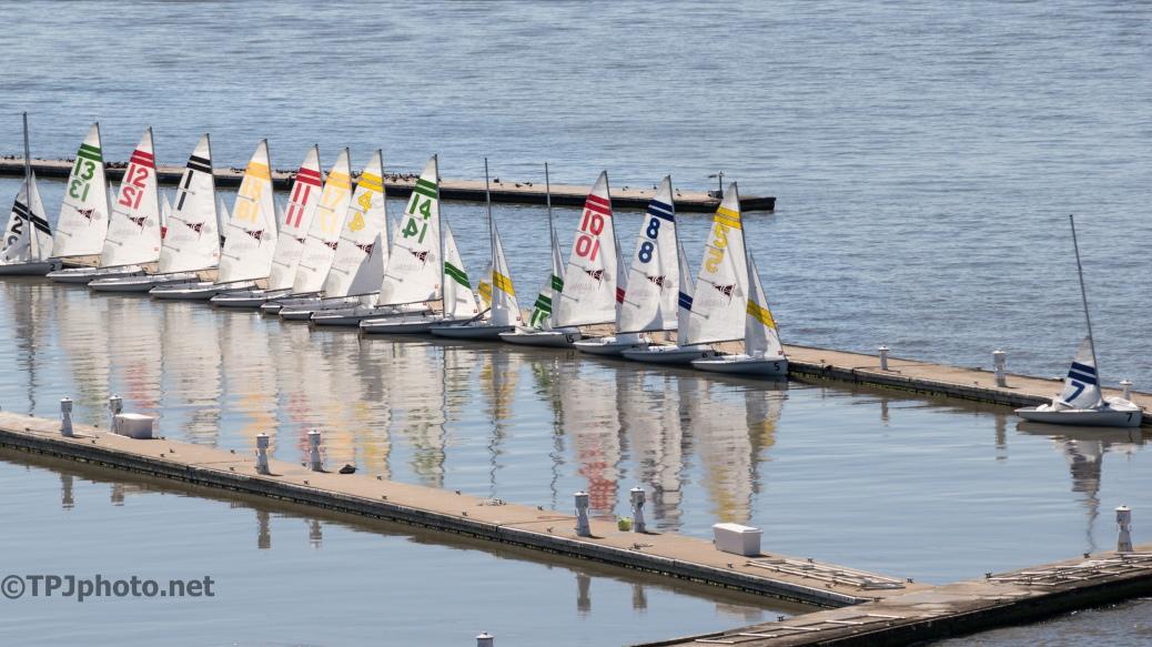 Charleston College Small Boat Regatta - Click To Enlarge