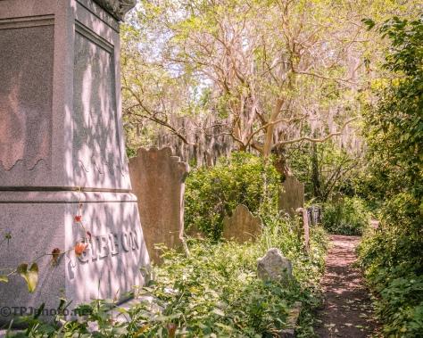 Unitarian Church Graveyard In Charleston - Click To Enlarge