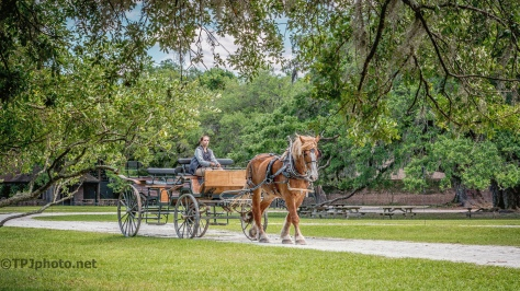 Horse Drawn Farm Wagon - Click To Enlarge