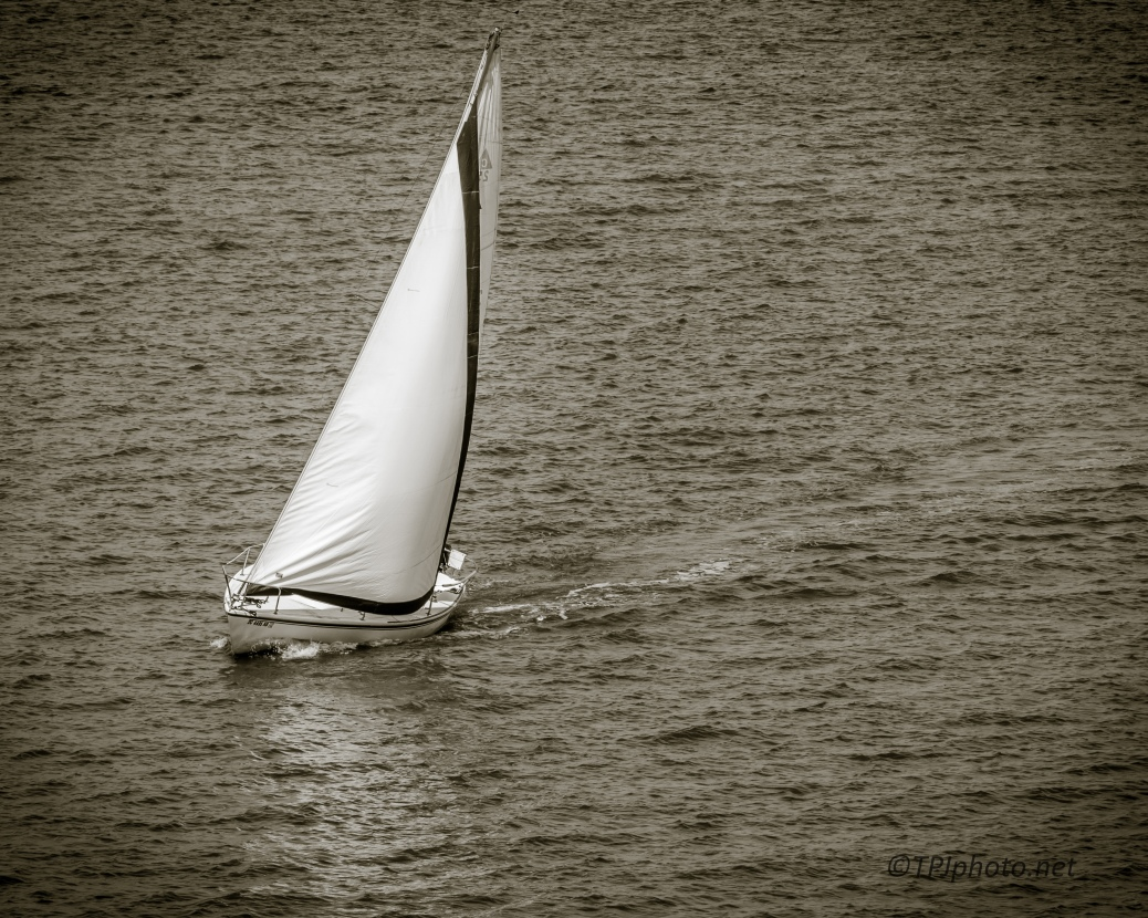 Sailing, Black And White - Click To Enlarge