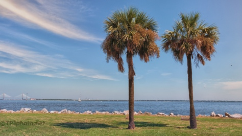 Nice Day Near Charleston - Click To Enlarge