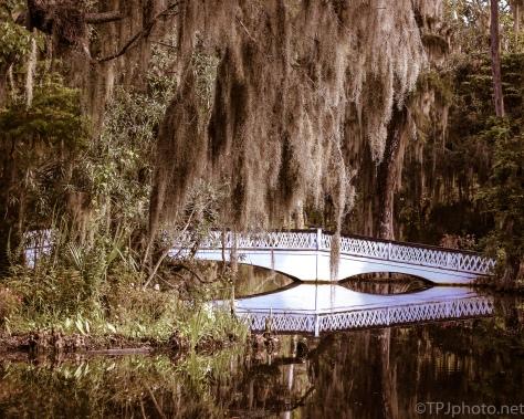 Garden Bridge Reflections - Click To Enlarge