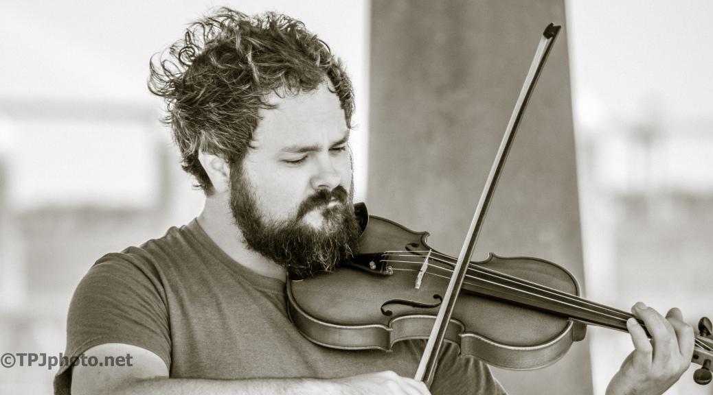 Charleston Fiddler - Click To Enlarge