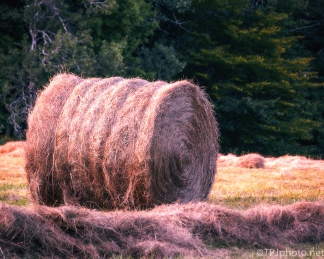 Hay Bale - Click To Enlarge