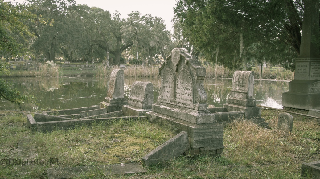 Beauty In Neglect, Cemetery- click to enlarge