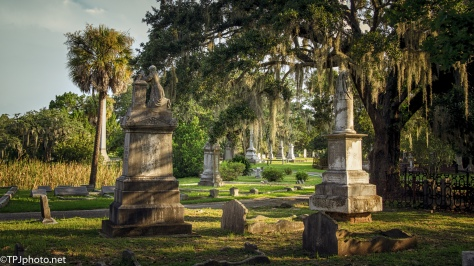 Old Magnolia Cemetery - click to enlarge