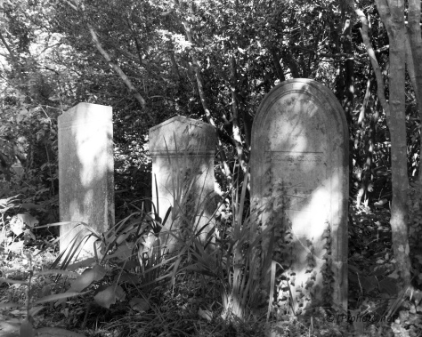 Down The Alley, Old Cemetery - click to enlarge