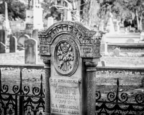 Contrasts And Texture, Cemetery - click to enlarge