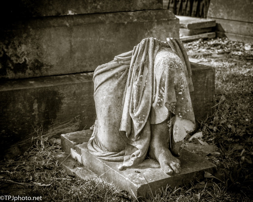 Magnolia Cemetery, Black And White - click to enlarge