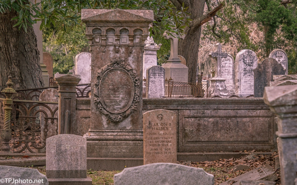 A Crowd At Magnolia Cemetery - click to enlarge