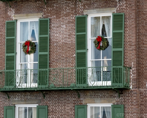 Christmas Wreaths, Charleston - click to enlarge