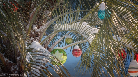 Wrong On So Many Levels - click to enlarge