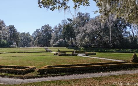 Oldest Gardens In USA, Middleton Plantation - click to enlarge