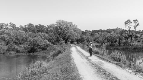 Marsh Dirt Road - click to enlarge