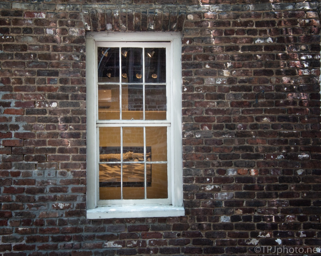 Windows On Charleston - click to enlarge