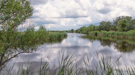 Marsh Walk - click to enlarge