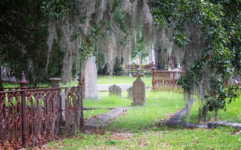 Headstones, Charleston, SC - click to enlarge