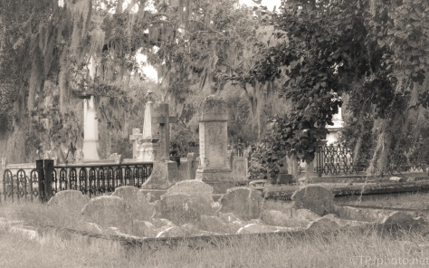 Quiet Spot, Old Magnolia Cemetery - click to enlarge
