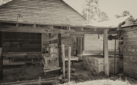 The Cabins, Sepia - click to enlarge