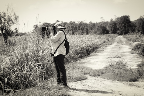 A Tourist Scouting New Locations - click to enlarge