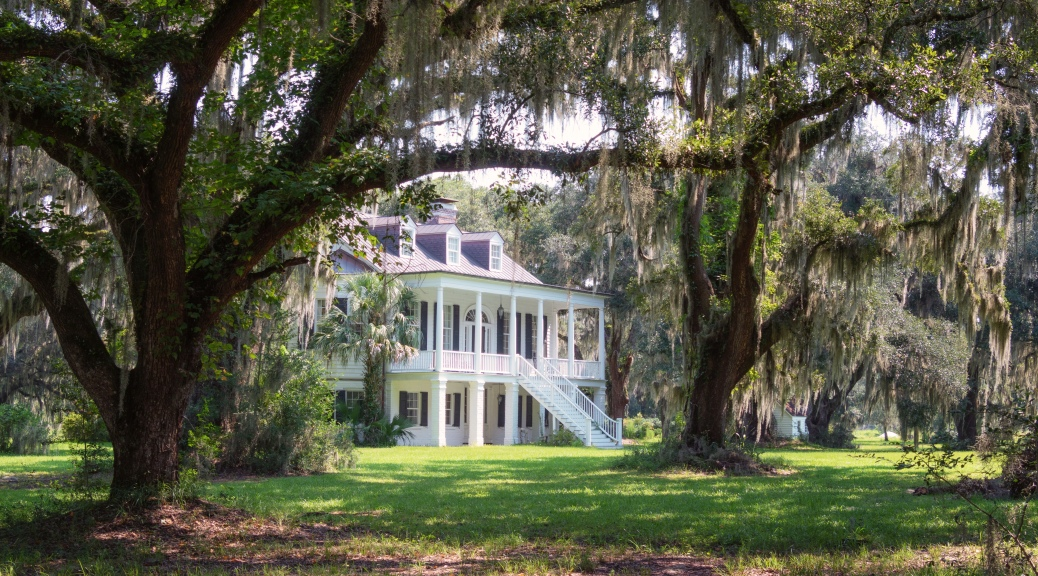Grove Plantation (1) - click to enlarge