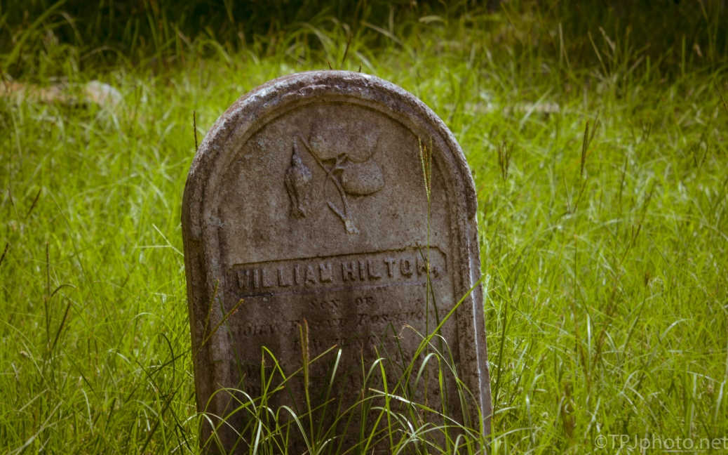Headstone, Slowly Back To Nature - click to enlarge