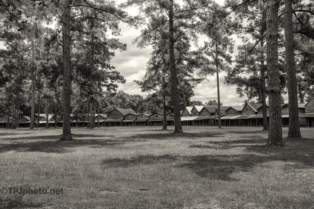 Camp Meeting Grounds, B&W - click to enlarge