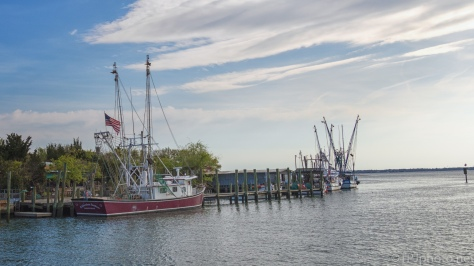 South Carolina Shrimp'n - click to enlarge