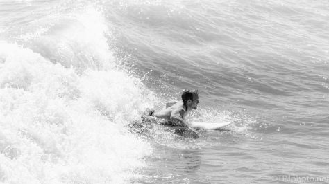 Surfing, B&W - click to enlarge