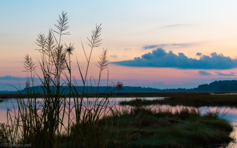 Marsh Sunrise - click to enlarge