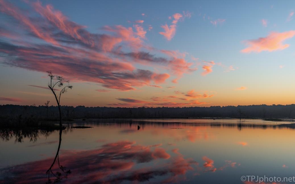 ACE Basin, Marsh Sunrise - click to enlarge