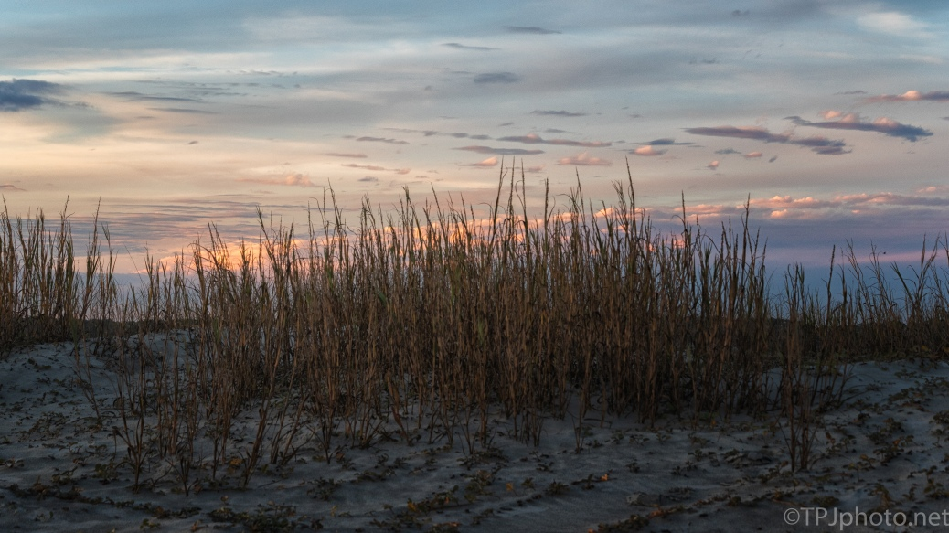 Dune At Sunset - click to enlarge
