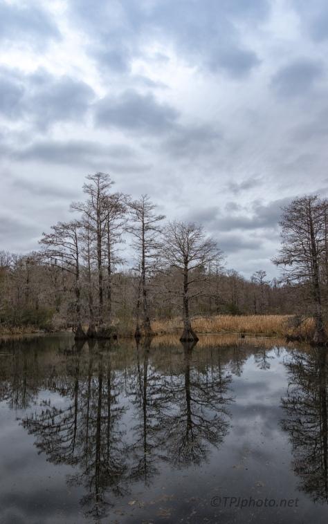 Cold, Wet, Landscape - click to enlarge