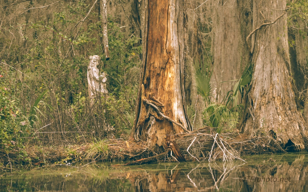Statue In A Swamp - click to enlarge
